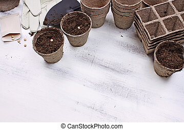 Gardening Tools and Planting Seeds