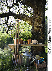 Gardening tools and plants outdoor nature shoot