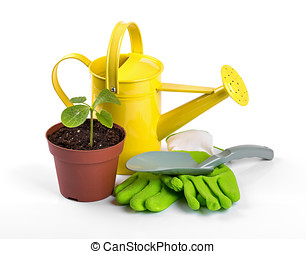 gardening tools and potted plant isolated on white background