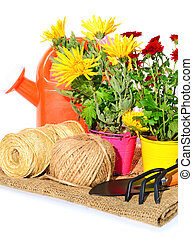 Gardening tools, flowerpot with oaklings flowers on the sacking