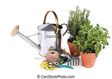 Gardening tools and spices plants isolated on white