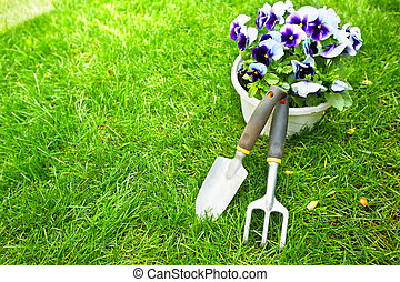 Gardening tools on green grass. - Gardening tools on green ...
