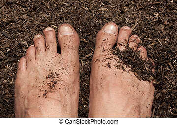 Gardening with feet in the dirt. seedlings and toosl in the shot too