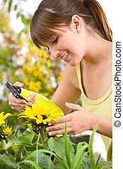 Gardening - woman sprinkling water on sunflower blossom