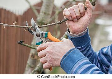 gardening work in spring time