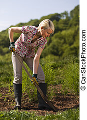 Gardening - Young woman working with shovel on the garden...