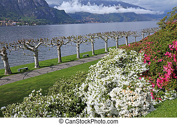 Gardens of Villa Melzi d'Eril  in Bellagio and landscape of Lake Como, Lombardy, Italy, Europe
