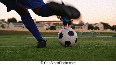 gardien, attente, coup de pied, football, femme, joueur, ...