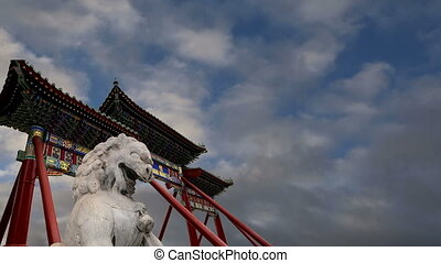 gardien, pierre, statue, lion, beijing