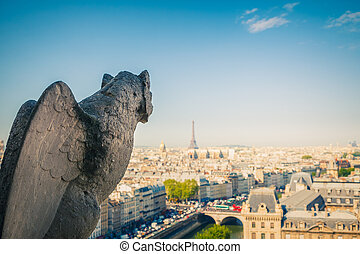 gargoyle, parijs, mokkel, kathedraal, notre