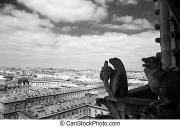 gargulec, wszystko, niewidzenie, najbardziej, paryż, notre, ...