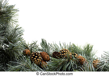 A green garland with pine cones border isolated on a white background, garland border