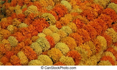 Garland of Flowers on sale at the Ganges, India - Extreme...