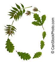 Garland of Leaves - Oval arrangement of fresh oak and rowan...