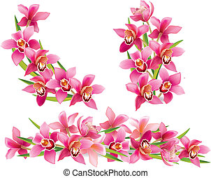 Garland of orchids. Contains transparent objects. EPS10