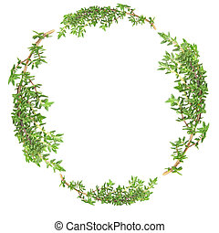 Garland of Thyme - Garland of thyme herb leaf sprigs over...