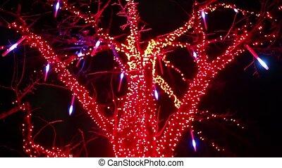 Garland on tree in dark, lamps blinking