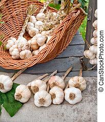 Garlic basket still life