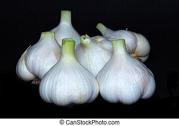 Garlic bulbs, on black background.