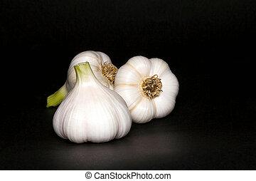 Garlic bulbs, on black background. - Fresh garlic bulbs in...