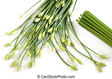 Garlic chives on white