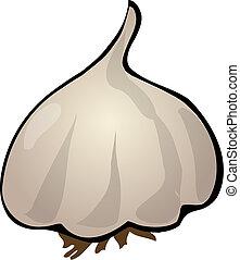 Garlic - Sketch of garlic Hand-drawn lineart look...
