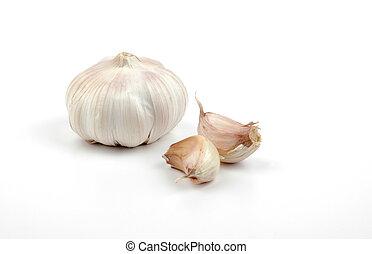 Garlic - Clove of garlic with buds.