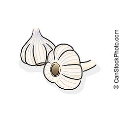 garlic - Garlic is widely used around the world for its...