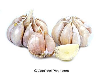 Garlic herb on white background