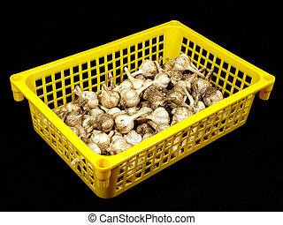 Garlic in a yellow plastic box