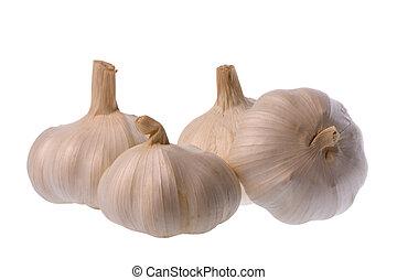 Garlic Isolated - Isolated macro image of garlic.
