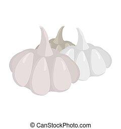 Garlic isolated. Vegetables on white background