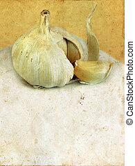 Garlic on a Grunge background