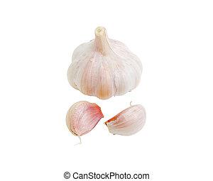 Garlic on a light background closeup