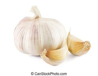 garlic on a white background