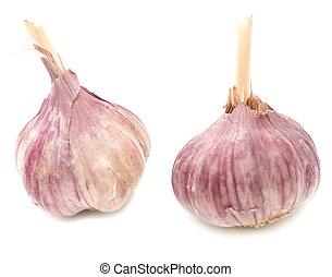 Garlic on white