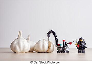 Garlic peeling concept. Illustrative editorial. September 02, 2021