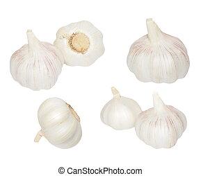 Garlic set isolated on white