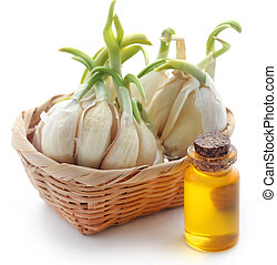 Garlic with essential oil in a bottle