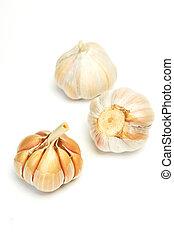garlics, 白, 隔離された