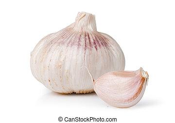 garlics over a white background  (Allium sativum)