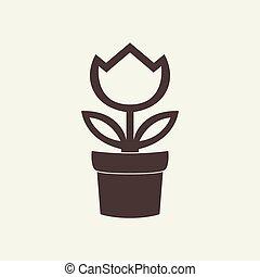 garnczek kwiatu, odizolowany, tło, biały, ikona