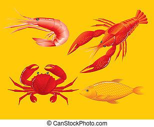 garnele, fische, krabbe, seafood:, languste