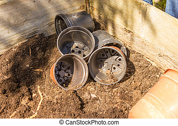 Gartenarbeit im Hochbeet mit Tomaten, Chili, im Frühjahr...