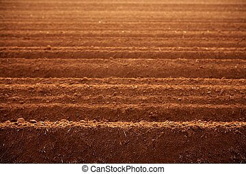 gartenerde, tonerde, gepflügte felder, landwirtschaft, rotes