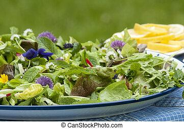 blume viola salat hintergrund bl tter spinat freigestellt sch ssel holz viola olive. Black Bedroom Furniture Sets. Home Design Ideas