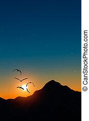 garzas, en vuelo, en, ocaso, en las montañas