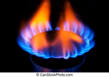 The flame of a natural gas burner of the kitchen stove.