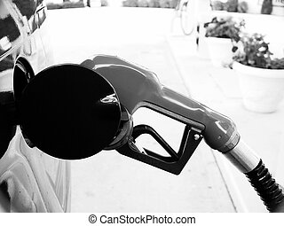 Gas Pump - Photo of a Gas Pump Nozzle
