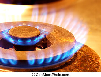 Gas Stove Fire Flame